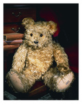 An Alpha Farnell Teddy Bear with Golden Mohair and Large Brown and Black Glass Eyes Giclee Print