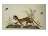 An Embroidered Panel of a Tiger Chasing Small Birds Among Bamboo, in Shades of Green & Brown Silks Giclee Print