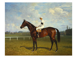 The Racehorse, 'Northeast' with Jockey Up Giclee Print by Emil Adam