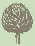 Artichoke, no. 11 Poster by  Botanical Series