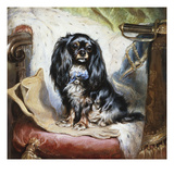 Jeannie, Queen Victoria's Favourite Spaniel Posters by Gourlay Steel