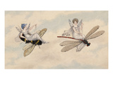 Two Fairies Flying Through the Air, One Seated on a Bee and the Other on a Dragonfly Giclee Print by Amelia Jane Murray