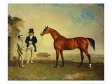 Skiff', a Bay Racehorse, Held by a Groom on Newmarket Heath, with John Howe, the Owner of the… Giclee Print by Benjamin Marshall