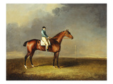 His Royal Highness, the Prince of Wales&#39; Bay Racehorse &#39;sir David&#39; by &#39;Trum Giclee Print by Henry Bernard Chalon