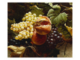 Pomegranates and Grapes Giclee Print by Michelangelo Meucci