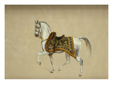 A Horse in Ceremonial Saddlecloth - the Mount of the Marquess Clanricade Giclee Print by Richard Barrett Davis