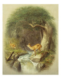 A Cautious Crossing Giclee Print by William Holbrook Beard