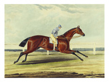 English Racehorses Giclee Print by G. Reeve