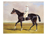 Sir Mark Wood's Racehorse 'Lucetta' with J. Robinson Up Giclee Print by John Frederick Herring I