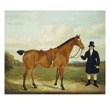 A Gentleman Holding His Hunter in a Landscape Giclee Print by E.W. Gill
