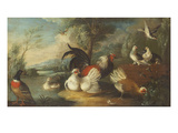 Ducks, Poultry and Doves by a Wall on a River Bank Lámina giclée por Marmaduke Cradock