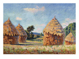 Haystacks; Les Meules Posters by Armand Guillaumin