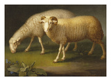 A Ram and a Sheep Giclee Print by Johan Wenzel Peter
