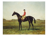 A Racehorse with Jockey Up on the Racetrack at Newmarket Giclee Print by Harry Hall