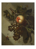 A Peach and a Bunch of Grapes Hanging from a Nail on a Wall Giclee Print by Willem Grasdorp
