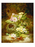 Primroses, Polyanthus, Apple Blossom and a Bird's Nest on a Mossy Bank Prints by Thomas Worsey