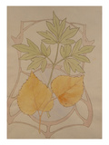 Design with Fig and Vine Leaves and a Sinuous Art Nouveau Motif in the Background. Posters by Koloman Moser