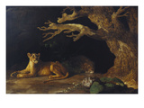 Lioness and Lion in a Cave Giclee Print by George Stubbs