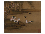 Ducks and Swallows. from an Album of Bird Paintings Impression giclée par Gao Qipei