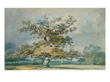 A Landscape with an Old Oak Tree Reproduction procédé giclée par William Turner