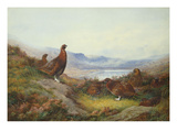 Morning of the Twelfth Giclée-Druck von Archibald Thorburn