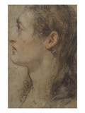 The Head of a Youth, in Profile to the Left Giclee Print by Italian School 