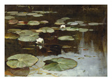 Water Lilies Giclee Print by Julius Sergius Klever