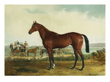 Kentucky Giclee Print by Edward Troye
