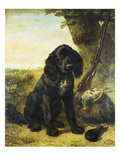 A Flat-Coated Retriever by a Tree Giclée-Druck von Henriette Ronner-Knip