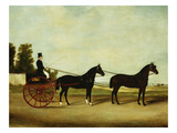 Coachman in a Tandem Giclee Print by W. Birch