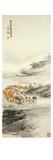 Tigre Reproduction giclée Premium par Zhang Shanzi