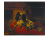 A Spaniel on a Cushion with a Dog Basket and a Porcelain Bowl Posters by Giacomo Ceruti (Attr to)