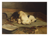 Puppies Sleeping Premium Giclee Print by William Henry Hamilton Trood