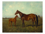 A Mare and Foal in a Landscape Poster by Franz Reichmann