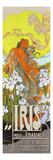 Iris Premium Giclee Print by Adolfo Hohenstein