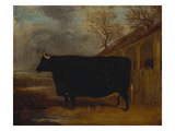A Black Bull Standing by a Cowshed, an Extensive Landscape Beyond Poster by James Pollard