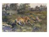 A Vixen with Her Cubs in a Wooded Marshy Landscape Giclee Print by Bruno Andreas Liljefors