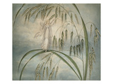 A Fairy Waving Her Wand Standing Among Blades of Grass Giclee Print by Amelia Jane Murray