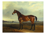 A Bay Hunter, the Property of the Hon F. Craven in a Landscape Giclee Print by Sr, John Ferneley