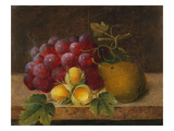Grapes, Cobnuts and a Pear on a Ledge Premium Giclee Print by Christine Marie Lovmand