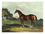 English Racehorses Giclee Print by J. Ferneley