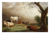Cattle in a Field, with Travellers in a Wagon on a Track Beyond and a Church Tower in the… Prints by Paulus Potter