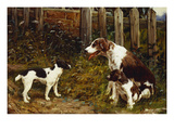 Proud of Her Litter Giclee Print by John Sargent Noble