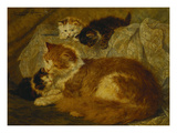 Contemplation Time Giclee Print by Henriette Ronner-Knip