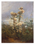 Thistles Posters by William Thomas Martin Hawksworth