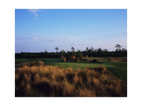 Barefoot Resort and Golf Love Course, Hole 6 Regular Photographic Print by Stephen Szurlej