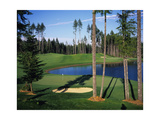 Gold Mountain Golf Club Olympic Course Regular Photographic Print by Stephen Szurlej