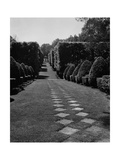 House & Garden - October 1949 Regular Photographic Print af André Kertész