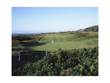 Royal Portrush Golf Club, fairway Regular Photographic Print by Stephen Szurlej