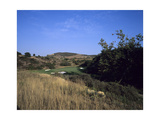 Shady Canyon Golf Course, Hole 8 Regular Photographic Print by Stephen Szurlej